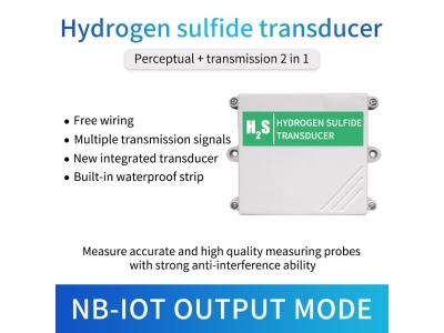 Lora/4g/Gprs/NB Hydrogen sulfide gas detector h2s gas sensor with cloud server