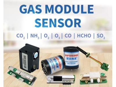 Various gas sensor modules gas detector sensor